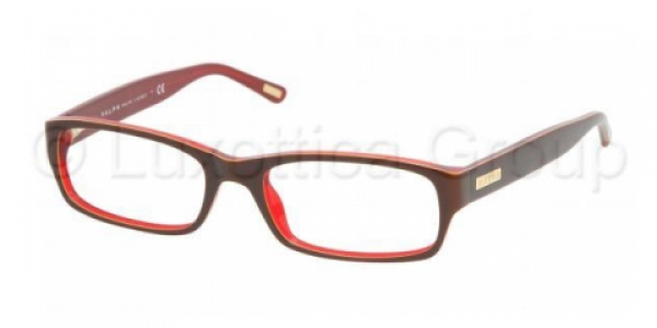 RALPH RA7018 BROWN/YELLOW/RED
